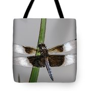 Sharp Focus Dragonfly Tote Bag