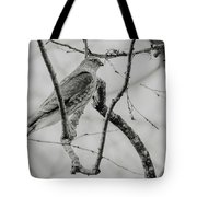 Sharp-shinned Hawk Black And White Tote Bag