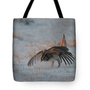 Sharptail Grouse On Snow Tote Bag