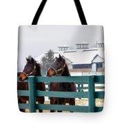 Shawanee Winter Tote Bag
