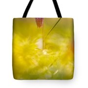 She Comes In Colours Tote Bag
