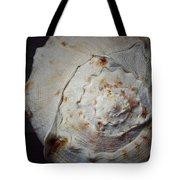 She Has A Seashell From The Seashore Tote Bag