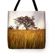 Shea Tree In Field, Near Lira, Uganda Tote Bag