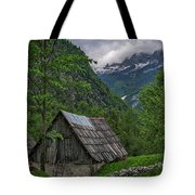 Shed In The Pass Tote Bag