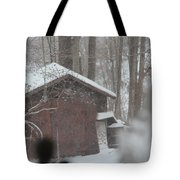 Shed Thru Glass And Snow Tote Bag