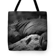 Shedd Aquarium Iguana Tote Bag