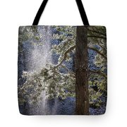 Shedding Snow Tote Bag