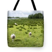 Sheep Animals Tote Bag