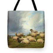 Sheep In A Pasture Tote Bag