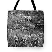 Sheep In Bw Tote Bag