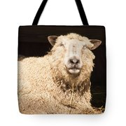 Sheep In Stable 2 Tote Bag