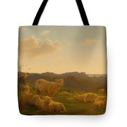 Sheep On A Hill Near Skarridso Tote Bag