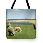 Sheep On Pasture Nature Farm Scene Tote Bag