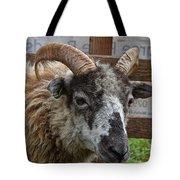 Sheep One Tote Bag