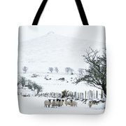 Sheep Shelter  Tote Bag