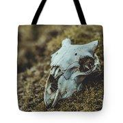 Sheep Skull Tote Bag