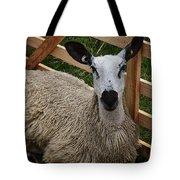 Sheep Two Tote Bag