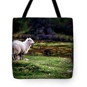 Sheep View Tote Bag