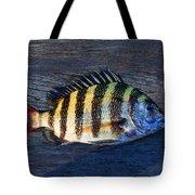 Sheepshead Fish Tote Bag