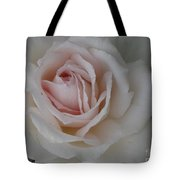 Sheer Bliss Rose Tote Bag