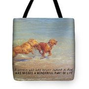 Sheer Joy Quote Tote Bag