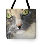 Shelby's Eyes 4 Tote Bag