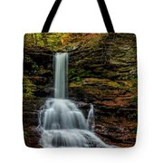 Sheldon Reynolds Falls Tote Bag