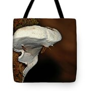 Shelf Fungus On Bark - Quinault Temperate Rain Forest - Olympic Peninsula Wa Tote Bag by Christine Till