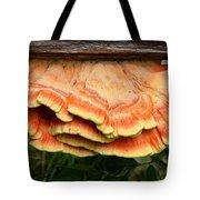 Shelf Mushroom Tote Bag