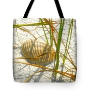 Shell And Beach Tote Bag