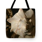Shell And Driftwood Tote Bag