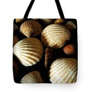 Shell Art - D Tote Bag