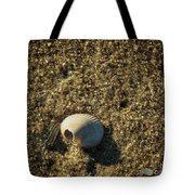 Shell At Dawn Tote Bag