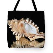 Shell On Black Tote Bag