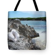Shell On Dominican Shore Tote Bag