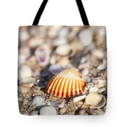 Shell On The Beach 3 Tote Bag