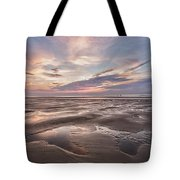 Shell Seeker Tote Bag