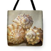 Shell Still Life Tote Bag