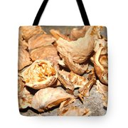 Shells Of Nut Tote Bag