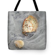 Shells On The Beach II Tote Bag