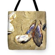 Shells On The Beach Of Jekyll Tote Bag