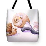 Shells Still Life Tote Bag