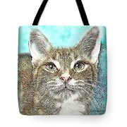 Shelter Cat Fantasy Art Tote Bag