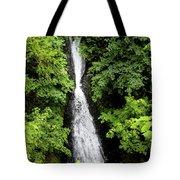 Shepperd's Dell Falls, Oregon Tote Bag