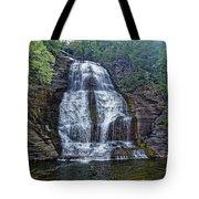 Shequaga Falls Tote Bag