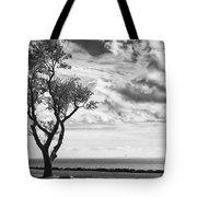 Sherwood Island Tote Bag