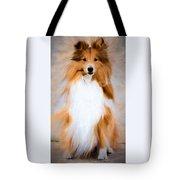 Shetland Sheepdog - Sheltie Tote Bag