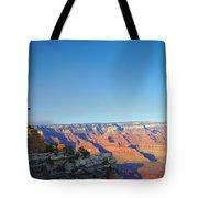 Shifting Perspectives Tote Bag