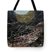 Shimmering Branches Tote Bag