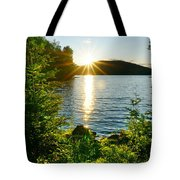 Shimmering Evening Tote Bag